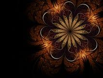 Fiore molle di frattalo Fotografie Stock