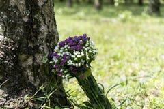 Fiore nell'ambito della radice dell'albero Immagine Stock