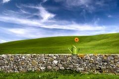 Fiore nello sbarco verde immagine stock libera da diritti