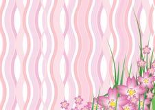 Fiore ondulato di Sakura Fotografia Stock Libera da Diritti
