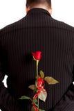 Fiore per voi fotografie stock