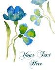 Fiore piacevole dell'azzurro dell'acquerello Fotografia Stock