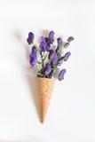 Fiore porpora nel cono della cialda su fondo bianco Concetto di estate Immagini Stock
