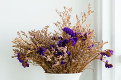 Fiore porpora secco in vaso Immagini Stock