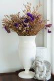 Fiore porpora secco in vaso Fotografia Stock Libera da Diritti