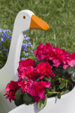 Fiore in primavera Fotografie Stock