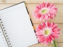 Fiore rosa 30 Fotografie Stock