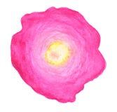 Fiore rosa in acquerello Fotografia Stock Libera da Diritti