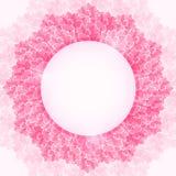 Fiore rosa brillante Lotus Flower Frame. Fotografie Stock