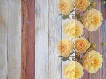 Fiore rosa di inglese su di legno Immagine Stock