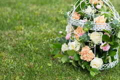 Fiore, rose nell'eleganza misera del birdcage Fondo dell'erba verde Fotografie Stock Libere da Diritti