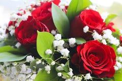 Fiore rosso con il foglio verde Fotografia Stock