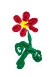 Fiore rosso dei colori Fotografie Stock