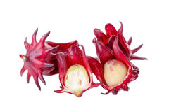 Fiore rosso della frutta di sabdariffa di Roselle Hibiscus su fondo bianco Fotografie Stock