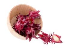 Fiore rosso della frutta di sabdariffa di Roselle Hibiscus su fondo bianco Fotografia Stock