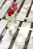 Fiore rosso e rosa Fotografie Stock Libere da Diritti