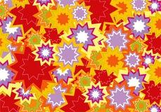 Fiore rosso e viola della stella Fotografia Stock
