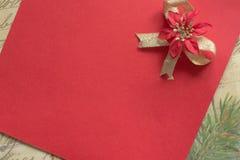 Fiore rosso su fondo rosso Fotografie Stock