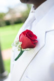 Fiore rosso su risvolto dello sposo fotografia stock libera da diritti