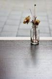 Fiore secco in vaso di vetro Fotografia Stock