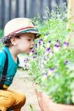 Fiore sentente l'odore del ragazzo immagini stock libere da diritti