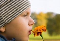 Fiore sentente l'odore del ragazzo in autunno Fotografia Stock Libera da Diritti