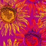 Fiore senza cuciture del sole con le foglie verdi su fondo rosa fotografia stock