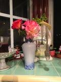 fiore sul davanzale della finestra Immagine Stock Libera da Diritti