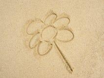 Fiore sulla sabbia Immagini Stock