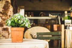 Fiore sulla tavola in caffè dell'azienda agricola Fotografia Stock Libera da Diritti