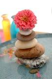 Fiore sulla torretta di pietra Fotografia Stock