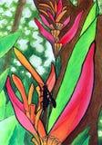 Fiore tropicale dell'acquerello Fotografie Stock Libere da Diritti