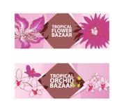 Fiore tropicale, illustrazione di vettore del bazar dell'orchidea Insegne della flora, alette di filatoio Piante esotiche Concett illustrazione vettoriale