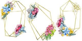 Fiore tropicale variopinto del mazzo dell'acquerello Fiore botanico floreale Elemento isolato dell'illustrazione illustrazione vettoriale