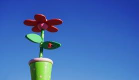 Fiore in un vaso Fotografia Stock