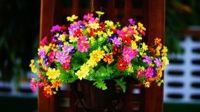 Fiore variopinto Immagini Stock Libere da Diritti