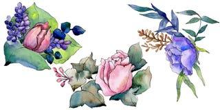 Fiore variopinto del mazzo dell'acquerello Fiore botanico floreale Elemento isolato dell'illustrazione illustrazione vettoriale