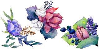 Fiore variopinto del mazzo dell'acquerello Fiore botanico floreale Elemento isolato dell'illustrazione illustrazione di stock