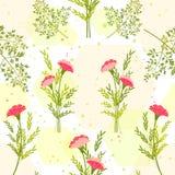 Fiore variopinto di primavera con Herb Background Fotografie Stock Libere da Diritti