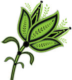 Fiore verde con i particolari fini Immagini Stock