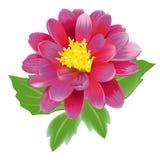 Fiore vermiglio royalty illustrazione gratis
