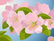 Fiore, vettore Royalty Illustrazione gratis