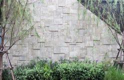 Fiore viola sul fondo del muro di mattoni Fotografie Stock