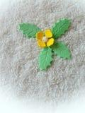 Fiore zuccherato giallo Immagine Stock