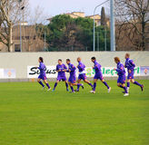 Fiorentina Football Club Royalty Free Stock Images