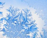 Fiori 10 del ghiaccio Fotografia Stock