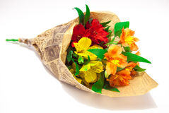 fiori Fotografie Stock Libere da Diritti