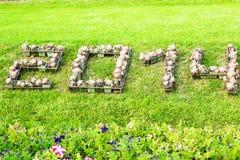 2014 in fiori Immagini Stock