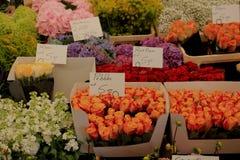 Fiori ad un mercato del fiore Fotografia Stock