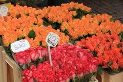 Fiori ad un mercato del fiore Immagine Stock
